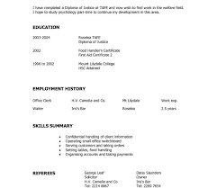 hybrid resume template hybrid resume format for study template executive bination word best