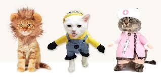 Hilarious Costumes 14 Best Cat Costumes For Halloween 2017 Hilarious Costumes For