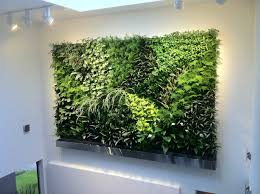 Vertical Wall Garden Plants by Living Walls Rosewood Irrigation Services Ltd