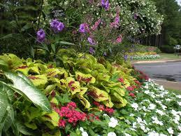 gibbs landscape residential and commercial landscaping gibbs