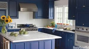 kitchen cabinet colors ideas the appeal of kitchen cabinet color schemes home interior home