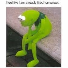 Meme Tired - i feel like i am already tired tomorrow internet meme kermit the