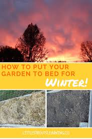 how to put your garden to bed for winter little sprouts learning