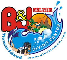 padi dive course packages b u0026j diving in tioman