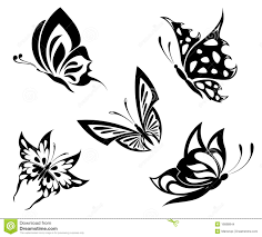 set black white butterflies of a stock vector image 16688844