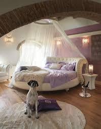 chambre pour chien le ciel de lit qui va changer l ambiance chez vous