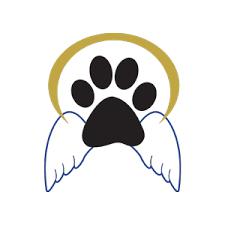 pet bereavement pet bereavement support animal protective foundation