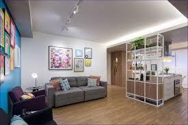 Storage Ideas Small Apartment Living Room Wonderful Small Apartment Bedroom Decorating Ideas