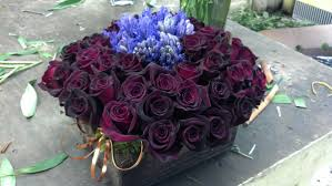 flower delivery boston flowers boston s premier florist s roses