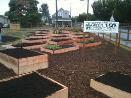 start a community garden pierce county cd wa