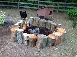 homemade chicken dust bath using cut logs chickens pinterest