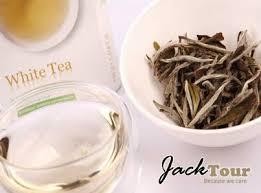 Teh Putih tour in bandung teh putih