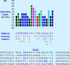 Meme Motif - current protocols in bioinformatics meme