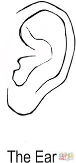 The Ear Coloring Page Free Printable Coloring Pages Ear Coloring Page
