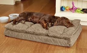 pillow top dog bed orvis plush memory foam dog bed pillow topped dream lounger with