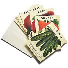 seed packets heirloom vegetable seed packet note cards ecommerce beekman 1802