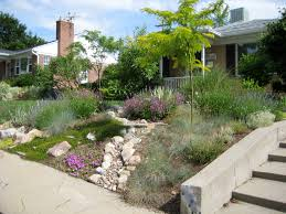 patio u0026 outdoor inspiring front yard landscape with drought