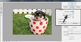 reset liquify tool photoshop photoshop errors quick solutions for liquify tool problems