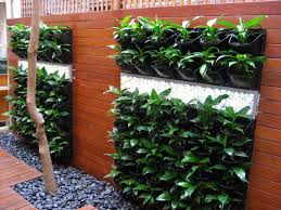 Indoor Herb Garden Kit Australia - vertical gardens and roof gardens u2013 perth western australia