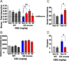 med si e social cannabidiol attenuates seizures and social deficits in a mouse model