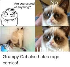 No Meme Grumpy Cat - no are you scared of anything grumpy cat meme on me me