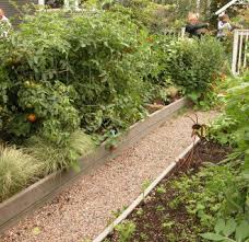 container home vegetable garden ideas 20 appealing container
