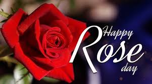 day 2018 types of roses and their meanings the indian express