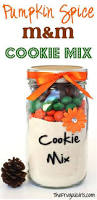 mason jar cookie recipes diy projects craft ideas u0026 how to u0027s for