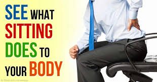 Which Cell Helps In Movement Of Bones What Happens To Your Body When You Sit All Day