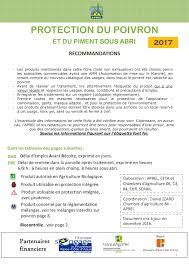 chambre d agriculture 84 calaméo 20100310 fiche poivron 2017