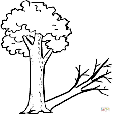 tree strange shadow coloring free printable