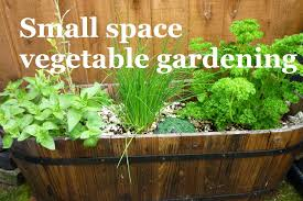 small space vegetable gardening u2013 a series about maximizing your