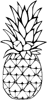 coloring pages the 25 best fruit coloring pages ideas on food