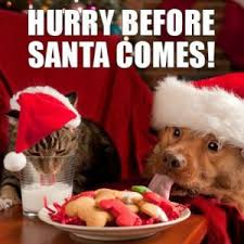 Christmas Eve Meme - christmas eve meme quotes for all