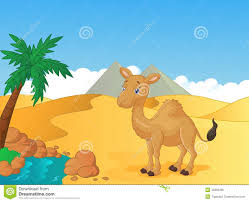 image gallery of desert camel cartoon
