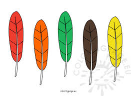 printable turkey feather template patterns resume templates website