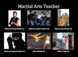 Martial Arts Memes - image 251762 what people think i do what i really do know