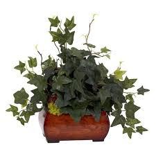 good houseplants for low light indoor plants for low light
