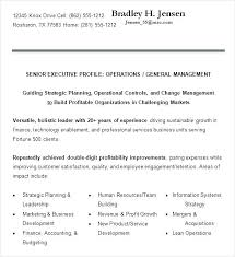 free executive resume senior executive resume