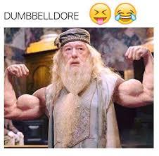 Memes Gym - dumbbelldore gym meme