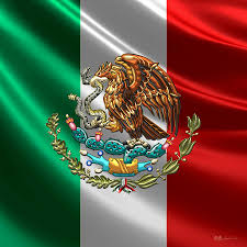 mexican flag art fine art america
