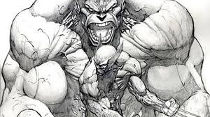 awesome photo incredible hulk wolverine photo