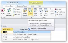 share access data with excel in office 2010