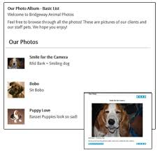 Pet Photo Albums Evetsites Photo Album Adding Sub Albums