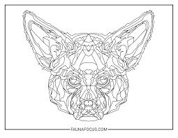 may 2017 aardwolf faunafocus