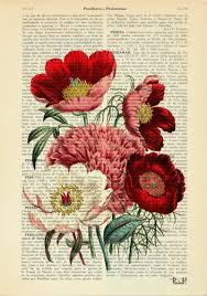 flower encyclopedia flower bouquet vintage book print dictionary or encyclopedia book