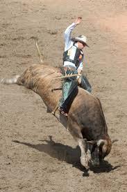 353 best heros images on pinterest bucking bulls bull riders