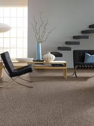 rugs u0026 carpet modern living room design with beige stainmaster