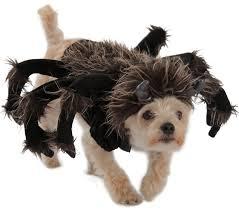 Extra Large Dog Costumes Halloween Tarantula Dog Costume Buycostumes