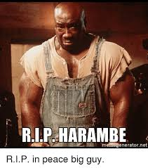This Guy Meme Generator - rip harambe memegenerator net rip in peace big guy peace meme on